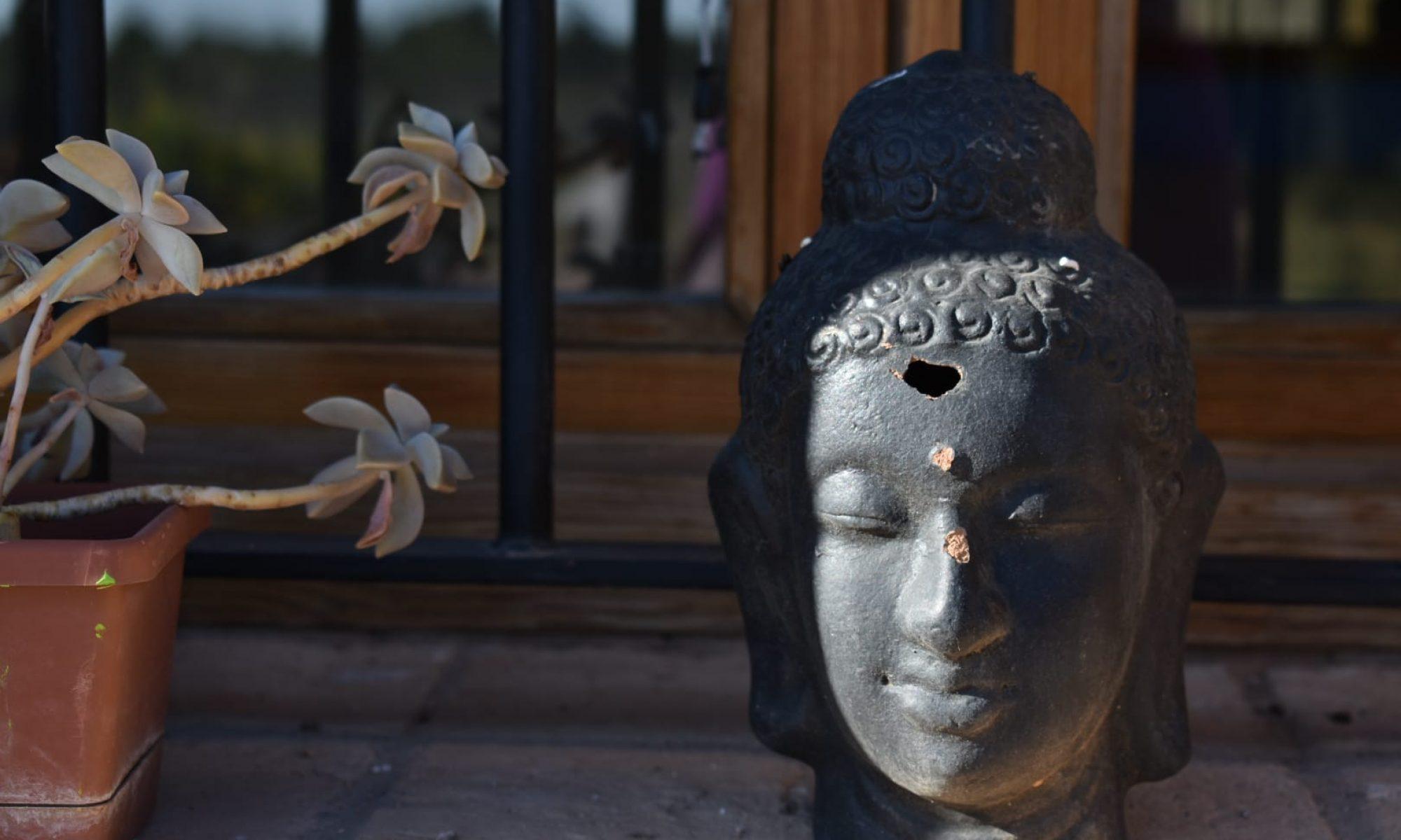 Centro de Retiros Suryavana